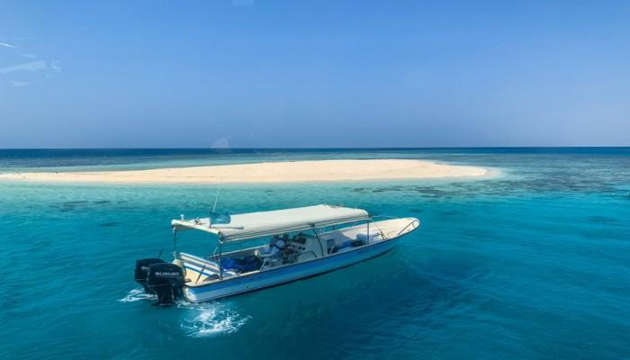 بلباس البحر.. مراسلة أجنبية تحتفي بعطلتها على سواحل السعودية (فيديو)