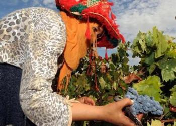 الاقتصاد المغربي.. والاستثمار الخليجي