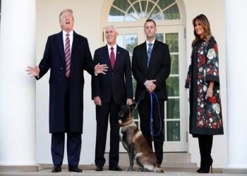 ترامب يكرم الكلب كونان لدوره في مقتل البغدادي