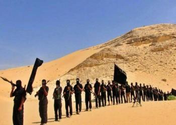 ولاية سيناء بمصر يغتال مسؤولا حكوميا سابقا