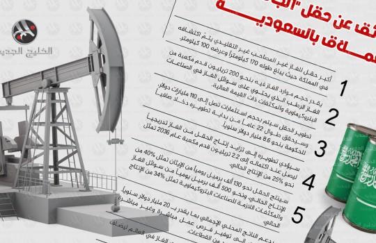 7 حقائق عن أكبر حقل عملاق للغاز بالسعودية