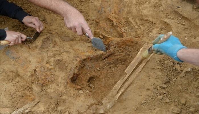 أقدم حمض نووي بشري.. عمره 800 ألف سنة
