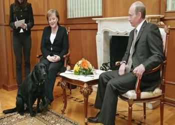 وقائع مثيرة من حرب التجسس الروسية على ألمانيا.. لماذا هددت ميركل بوتين؟