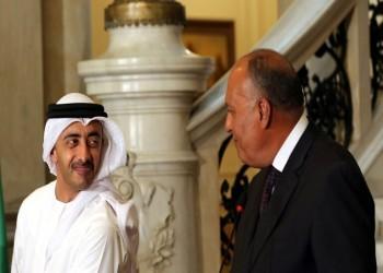 وزيرا خارجية مصر والإمارات يبحثان تطورات شرقي المتوسط