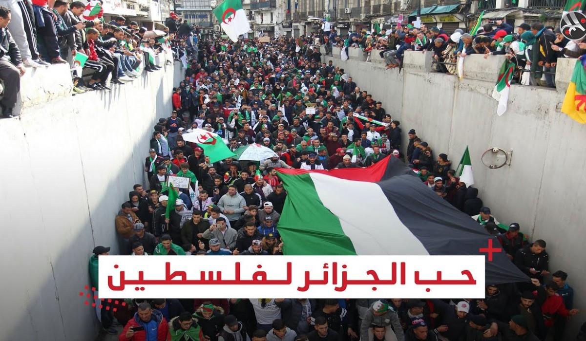 سر حب الجزائريين لفلسطين