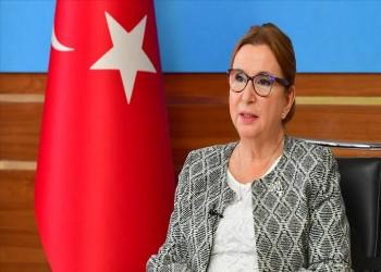 اتفاق تركي أوروبي على مواصلة التعاون برقمنة الإجراءات الجمركية